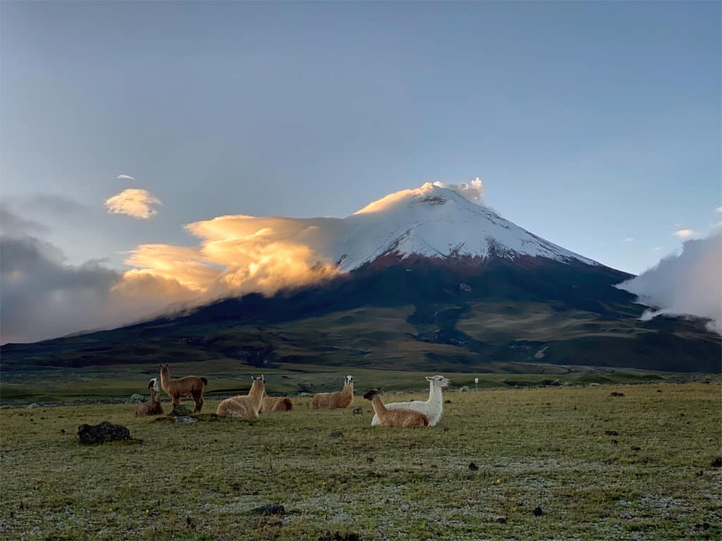 Andinisme sur le Cotopaxi en Équateur
