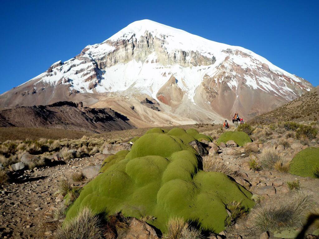 Andinisme sur le volcan Sajama en Bolivie