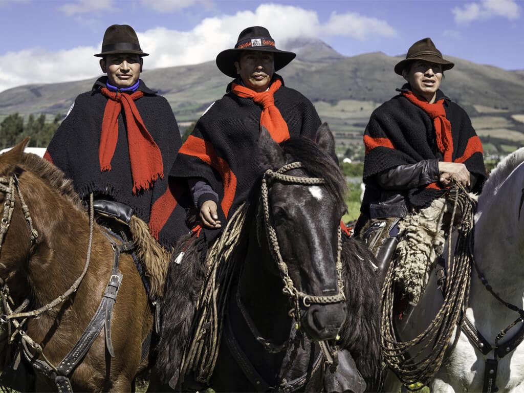 Chagras sur l'Avenue des volcans en Équateur