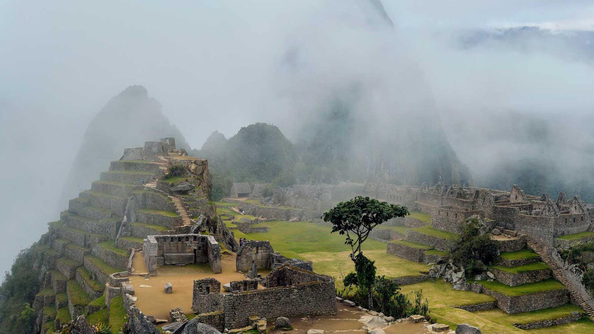 Chemin de l'Inca au Machu Picchu
