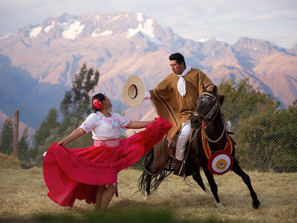 Le cheval de paso au Pérou