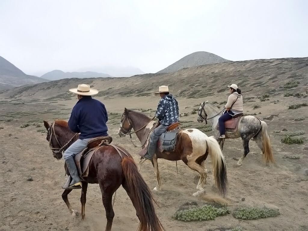 Chevauchées à la recherche des civilisations de Caral au Pérou
