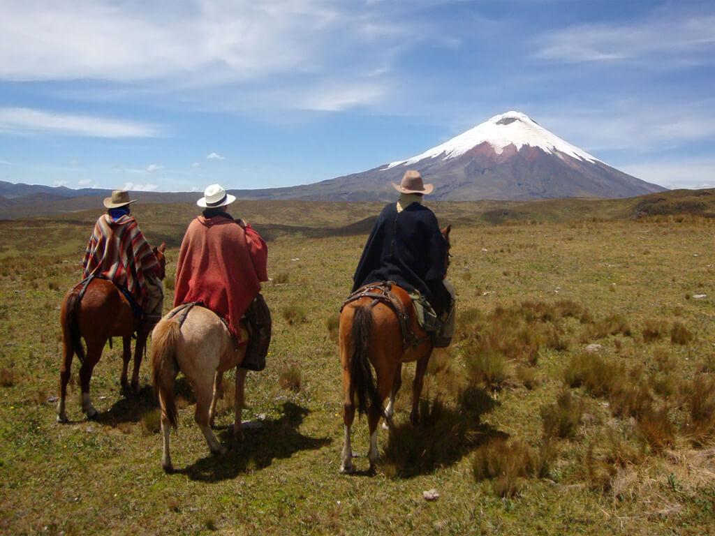Chevauchées aux pieds du volcan Cotopaxi en Équateur