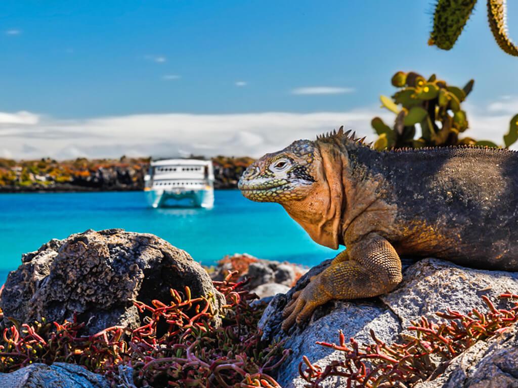 Croisières sur mesure aux Îles Galápagos