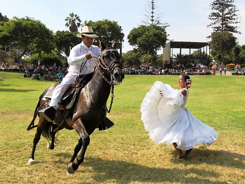 Démonstration de danse du cheval de Paso au Pérou
