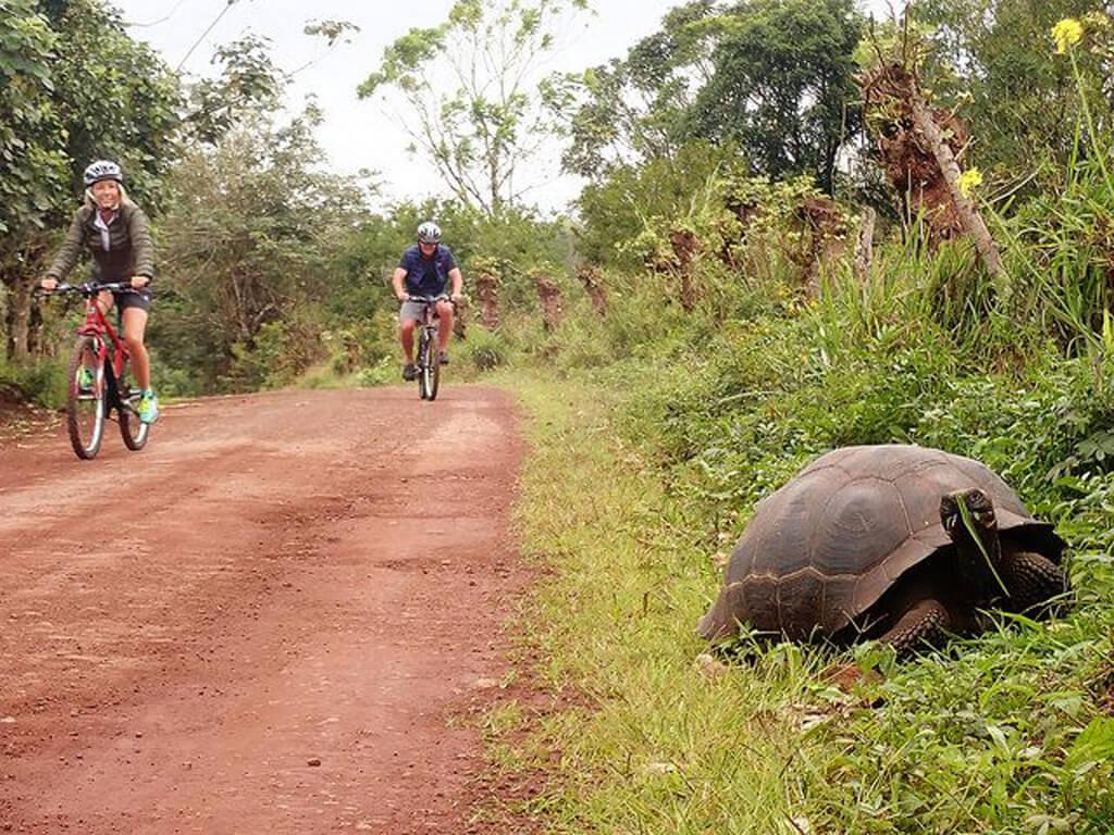 Les Îles Galápagos à vélo et en VTT