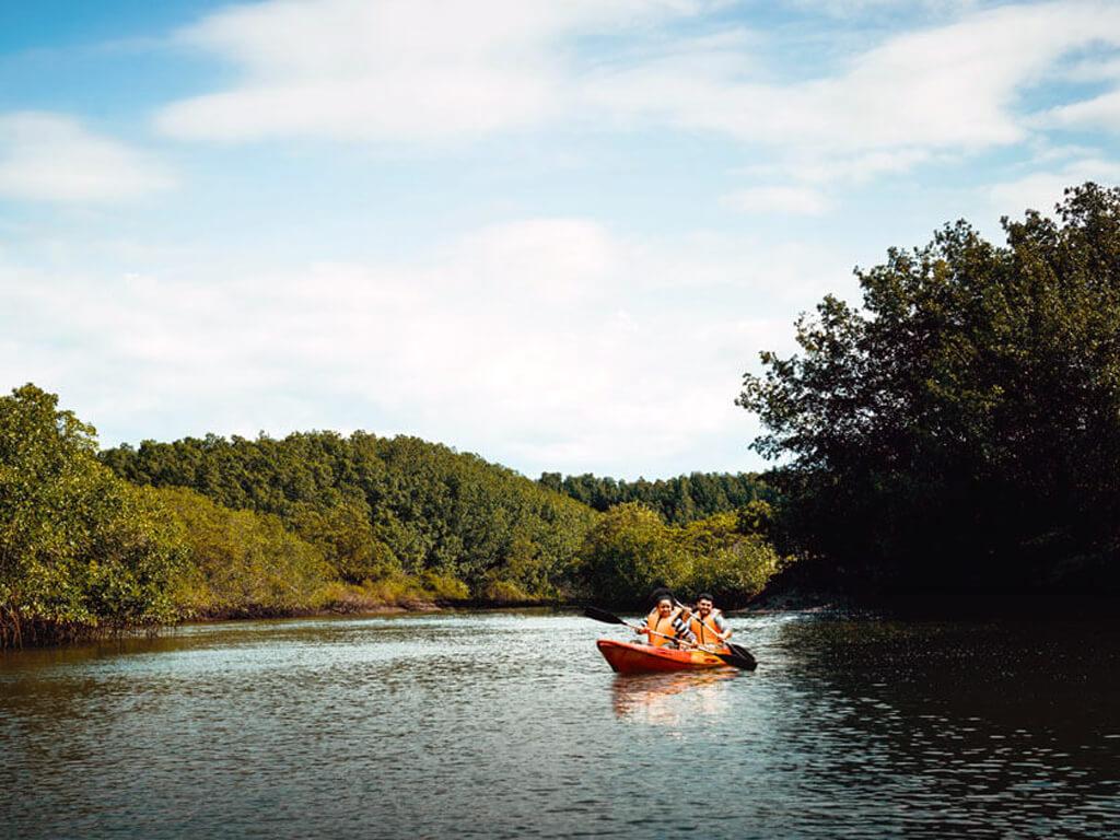 Kayak dans les mangroves de Tumbes au Pérou