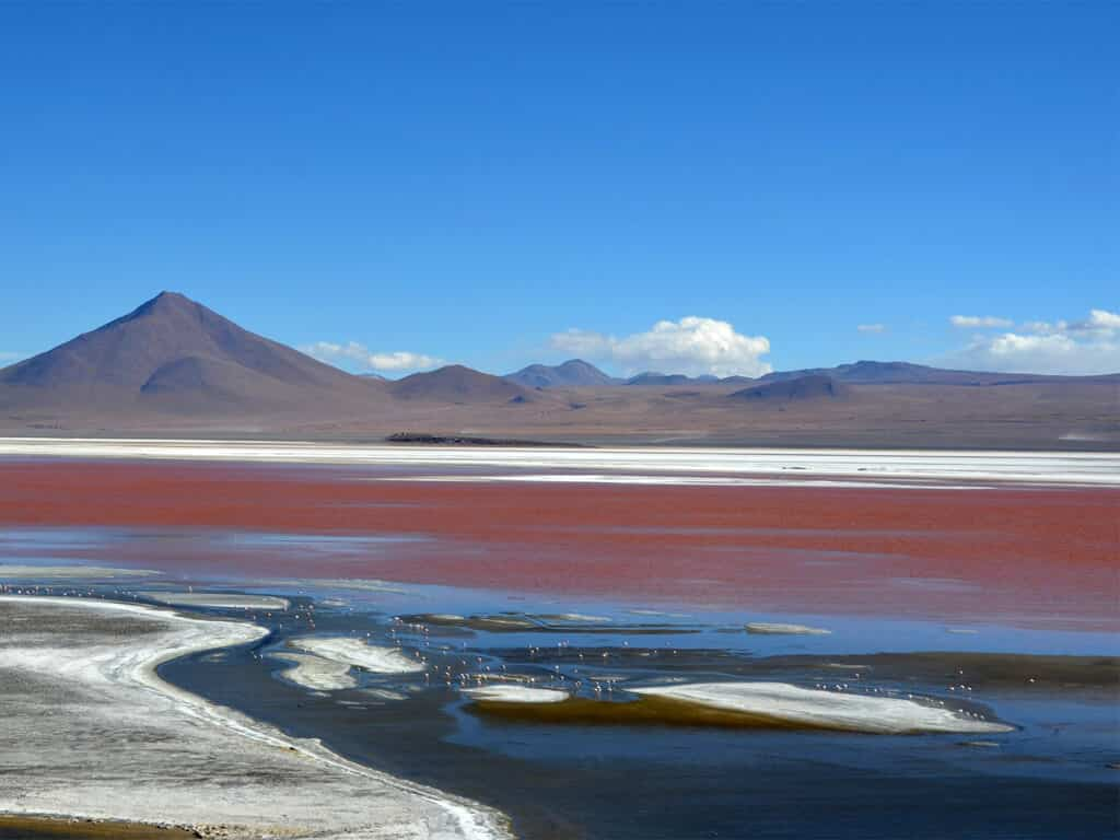 Laguna Colorada au Sud Lípez, Bolivie