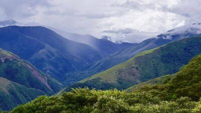 Les Yungas, Bolivie