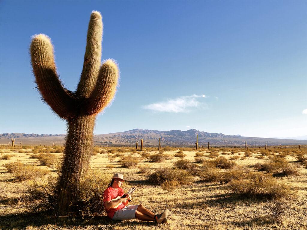 Le charango est la guitare des Andes