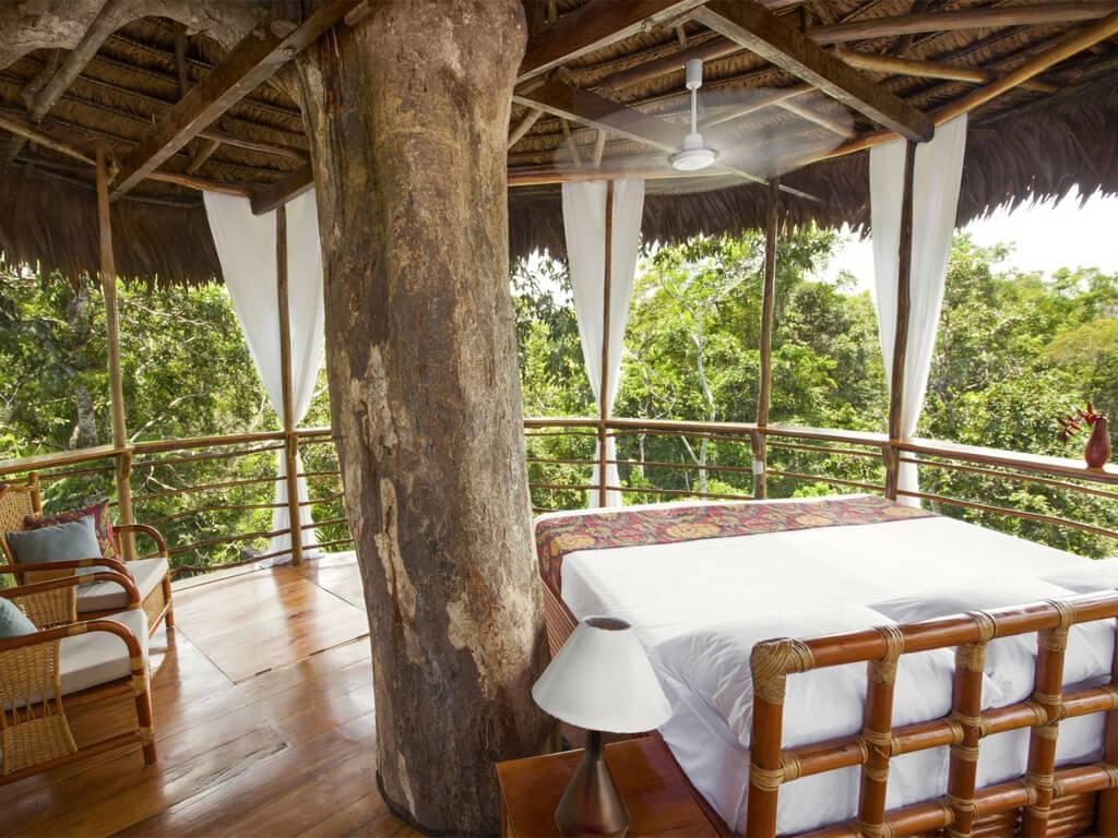Petites maisons dans les arbres en Amazonie