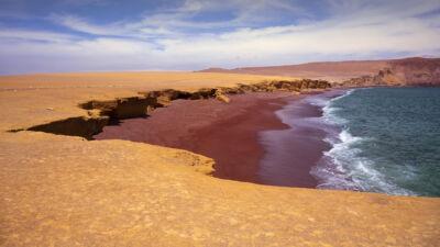 Paracas, côte Sud du Pérou