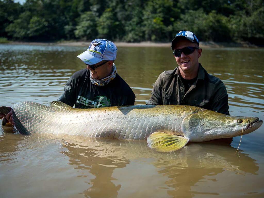 Pêche de l'Arapaïma en Amazonie, Bolivie, Pérou et Équateur