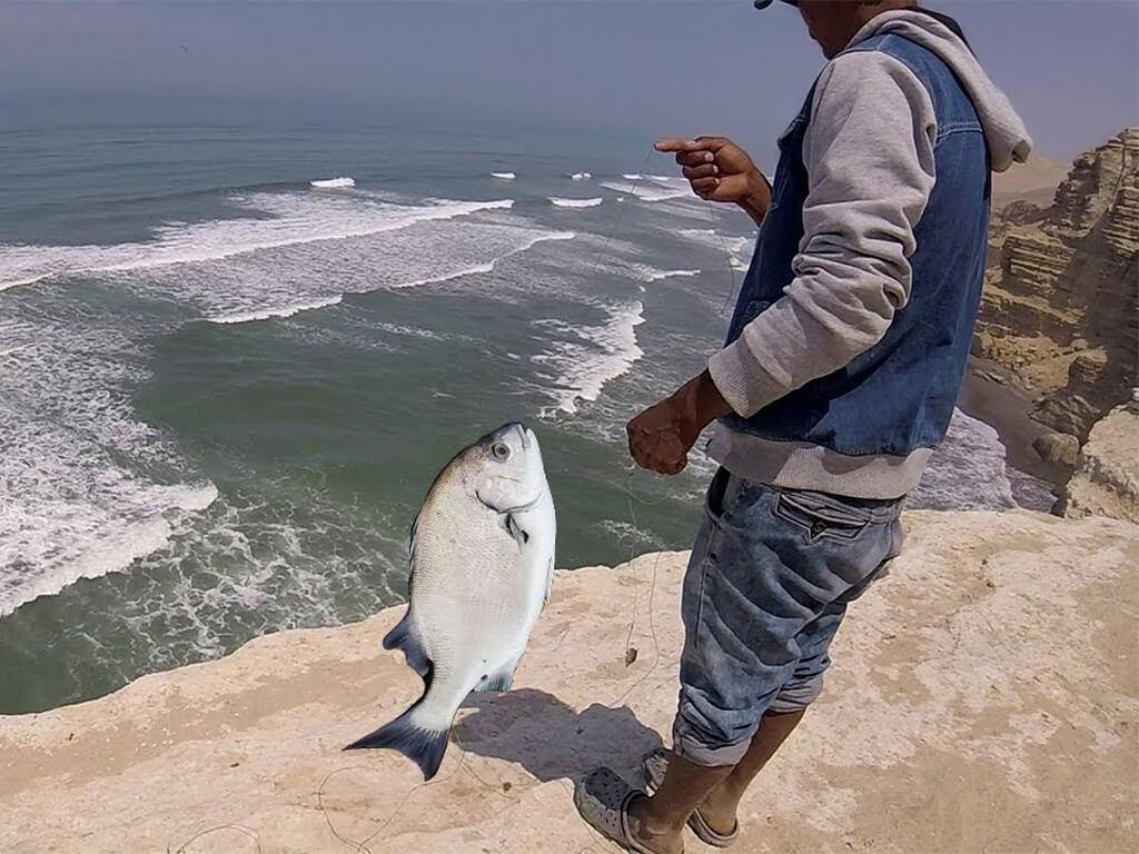 Pêche de Chita au Pérou