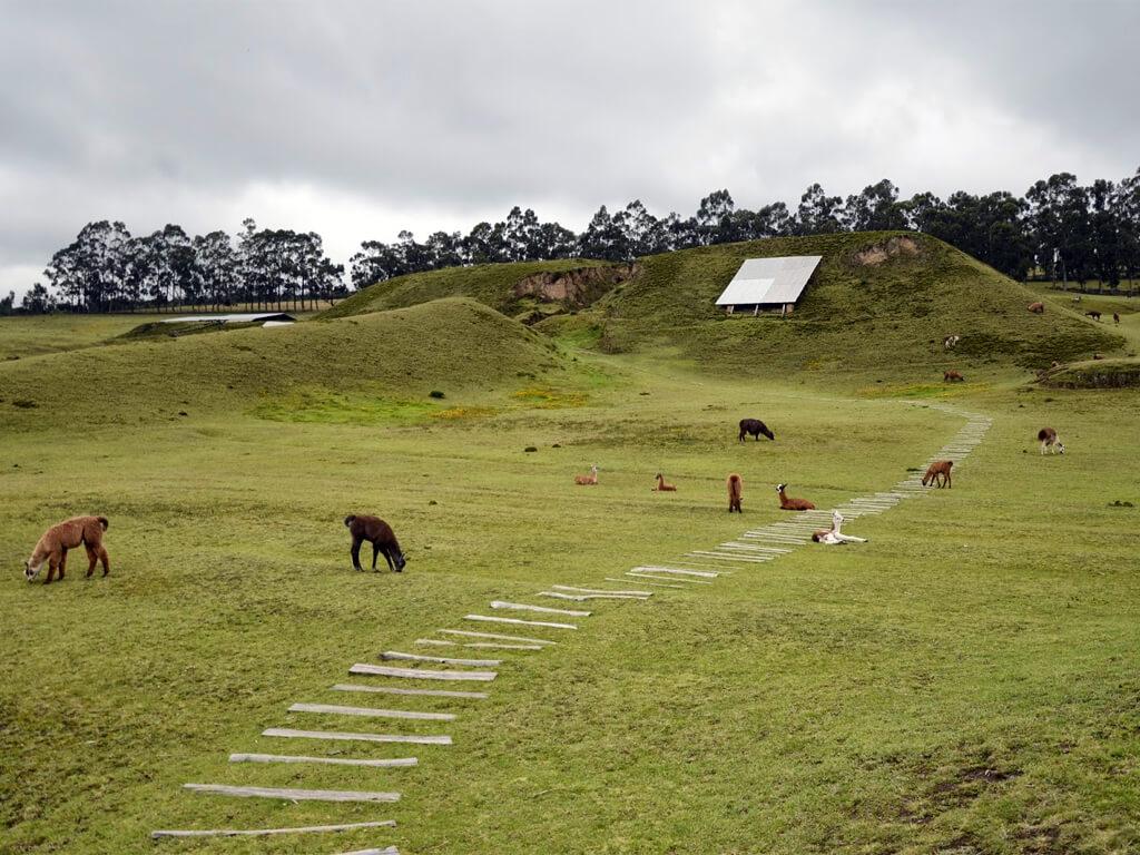 Site archéologique de Cochasquí en Équateur