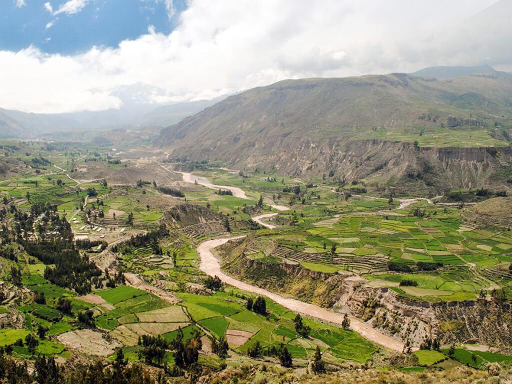 Les terrasses et Canyon du Río Colca au Pérou